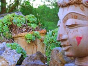 Schöner Buddha